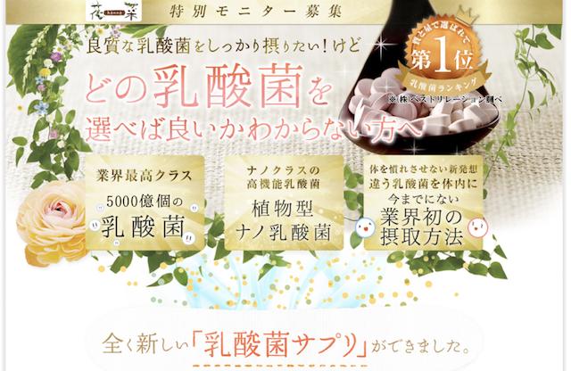 花菜 乳酸菌サプリ アトピー